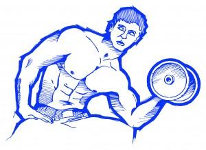 P4P richtig Muskelübungen ausführen